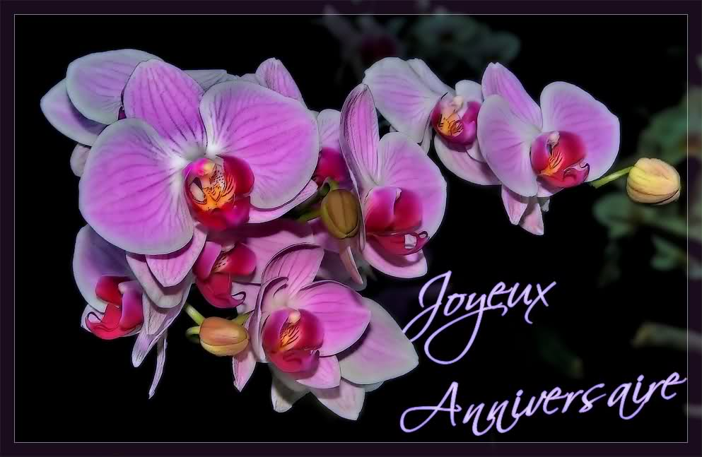 Carte anniversaire orchidee