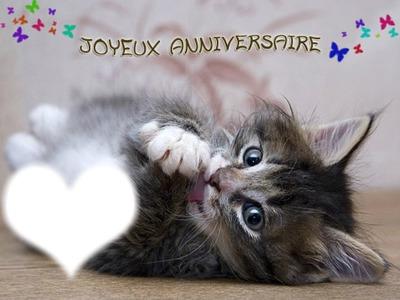 Carte anniversaire animé chat