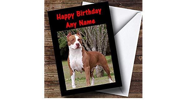 Carte anniversaire pitbull