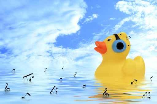 Carte anniversaire canard