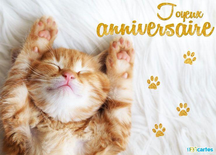 Carte d anniversaire avec chat