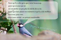 Texte anniversaire longue amitié