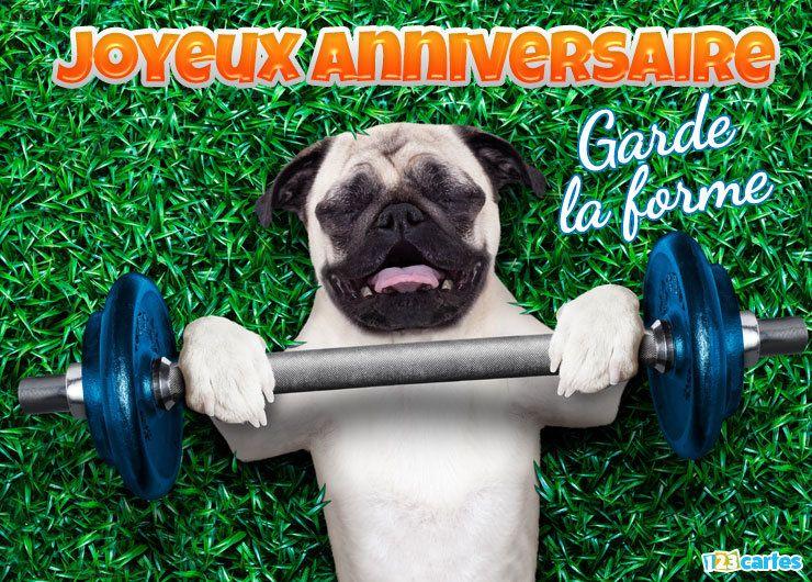 Carte anniversaire drole chien