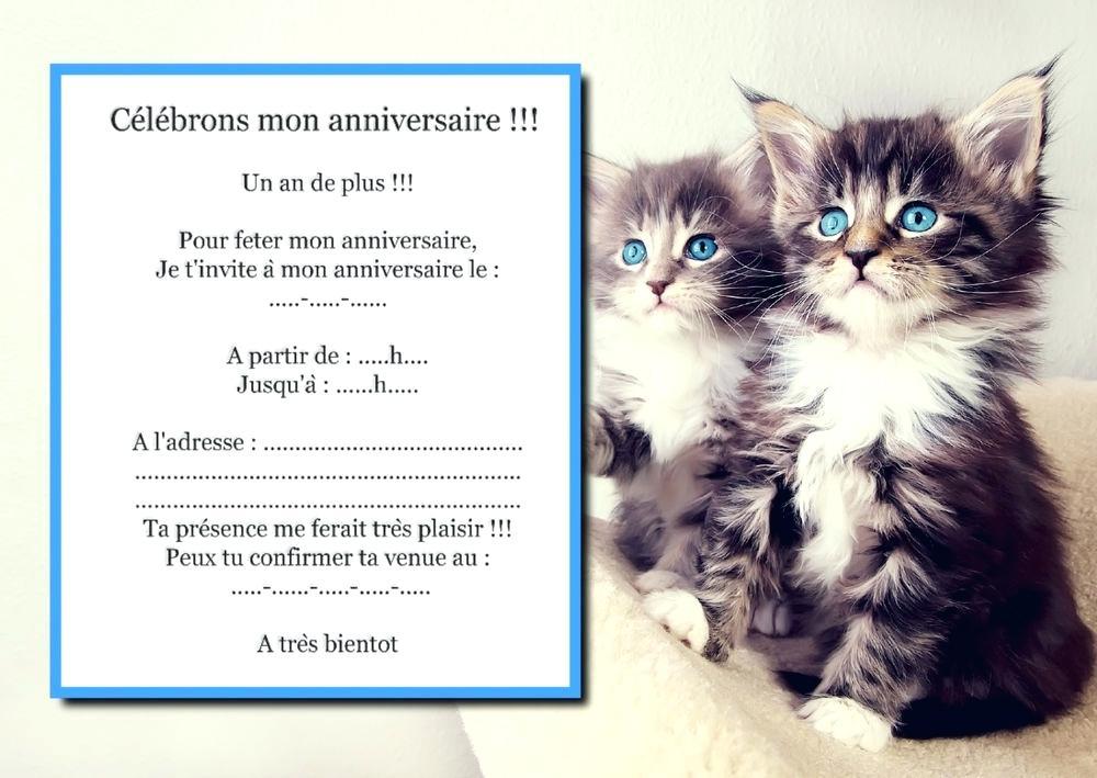 Carte Invitation Anniversaire Cheval Gratuite Elevagequalitetouraine