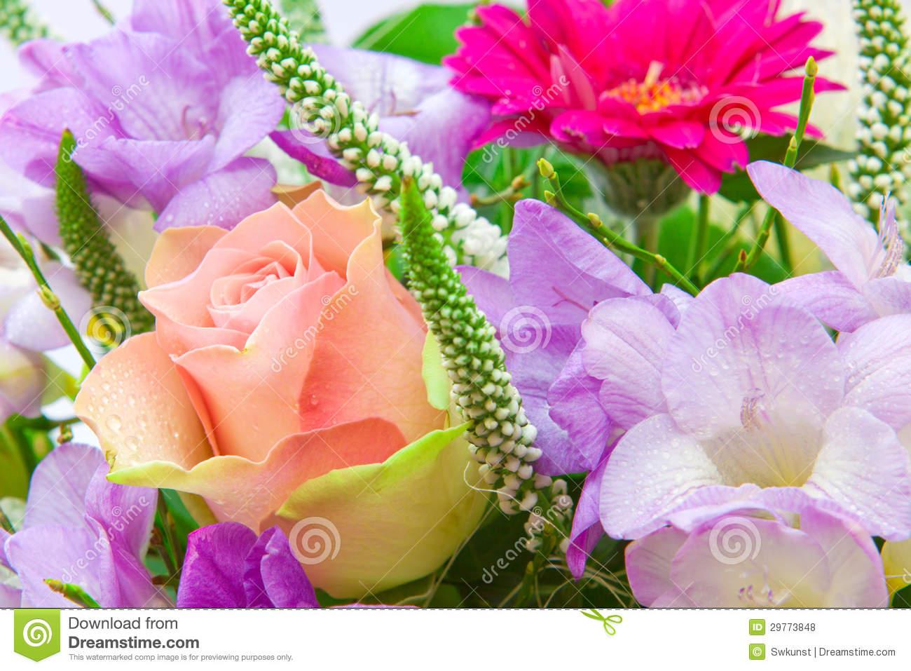 Carte anniversaire gratuites fleurs