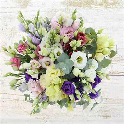 Envoi Carte Anniversaire Bouquet Fleurs Elevagequalitetouraine