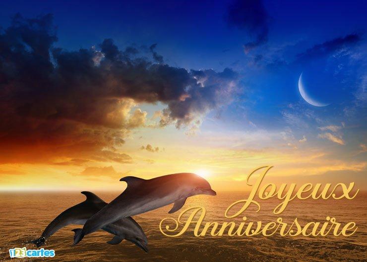 Carte anniversaire dauphin