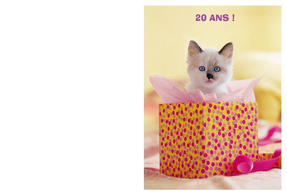 Carte anniversaire 20 ans a imprimer gratuit