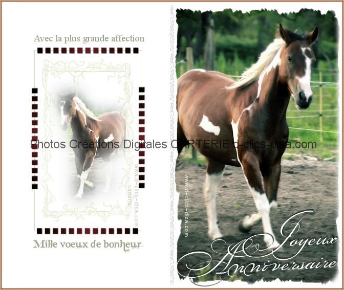 Carte d anniversaire cheval a imprimer