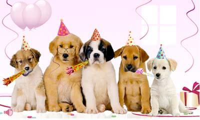 Envoyer carte anniversaire via facebook