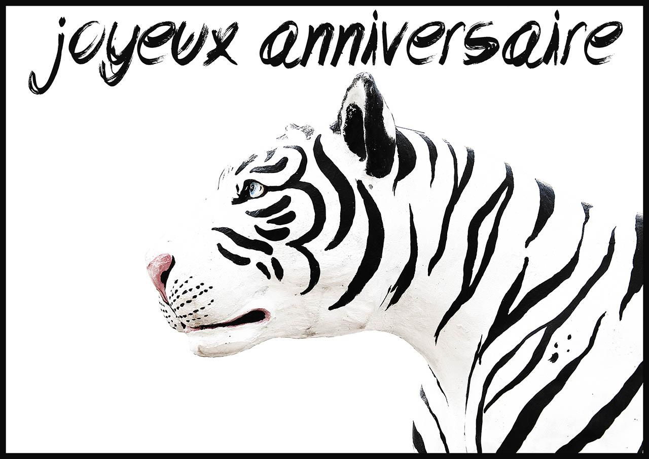 Carte Invitation Anniversaire Tigre Blanc