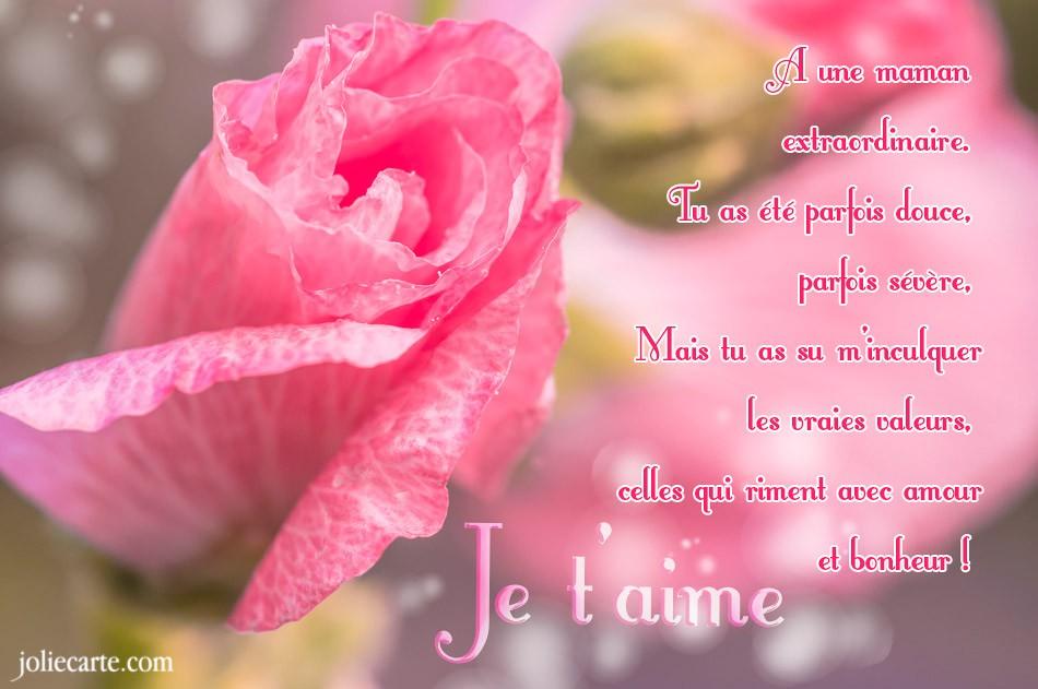 Jolie Carte Anniversaire Femme Gratuite Elevagequalitetouraine