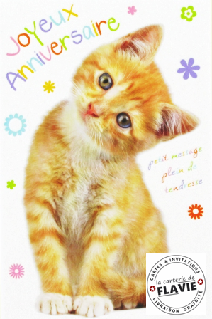 Carte Animee Joyeux Anniversaire Chat Elevagequalitetouraine