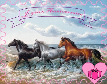Photo Carte Anniversaire Cheval Elevagequalitetouraine