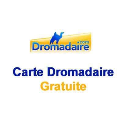 Carte Anniversaire Dromadaire Gratuite Pour Homme Elevagequalitetouraine