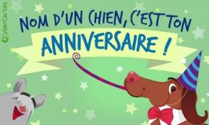 Carte animée anniversaire animaux