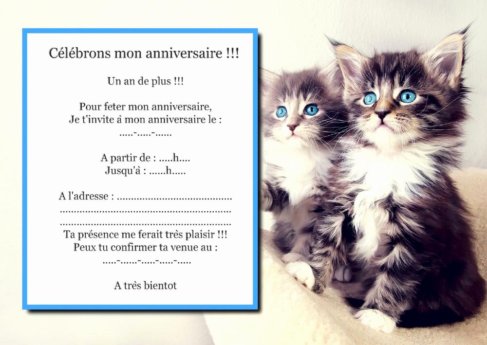 Carte anniversaire chat a colorier - Elevagequalitetouraine
