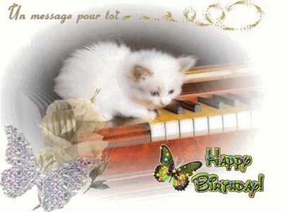 dromadaire carte anniversaire gratuit Dromadaire carte anniversaire gratuite chats   Elevagequalitetouraine