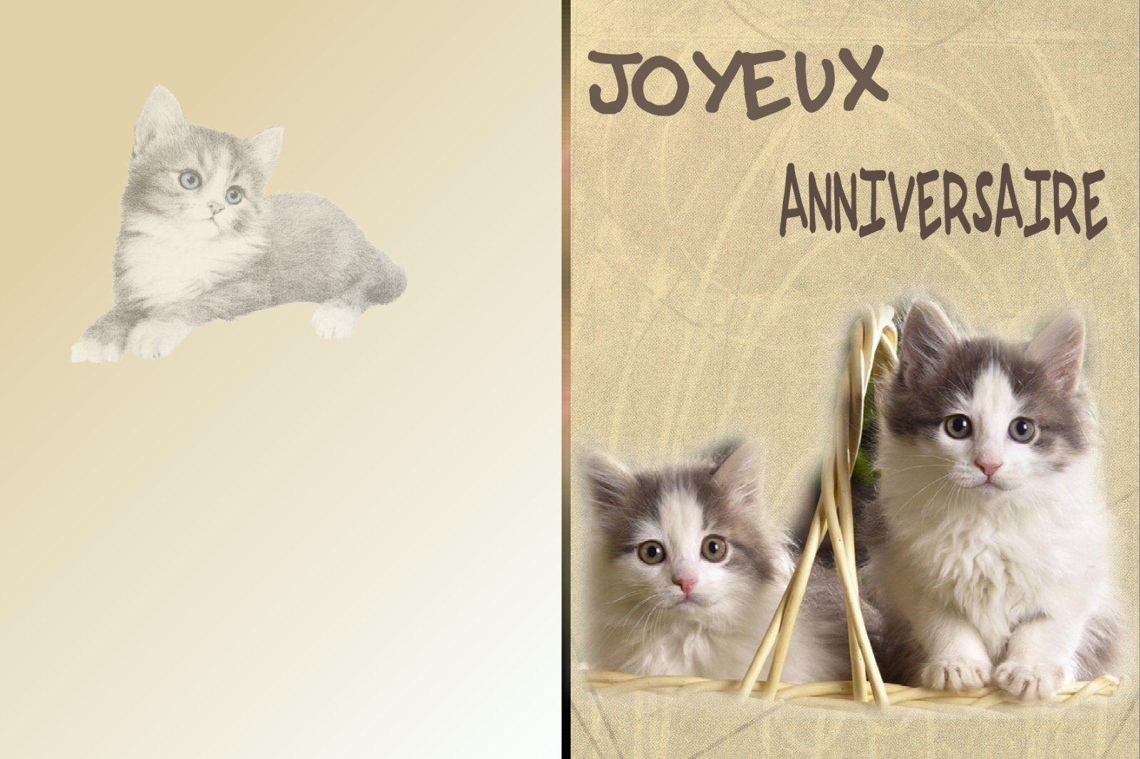 Carte anniversaire homme gratuite chat