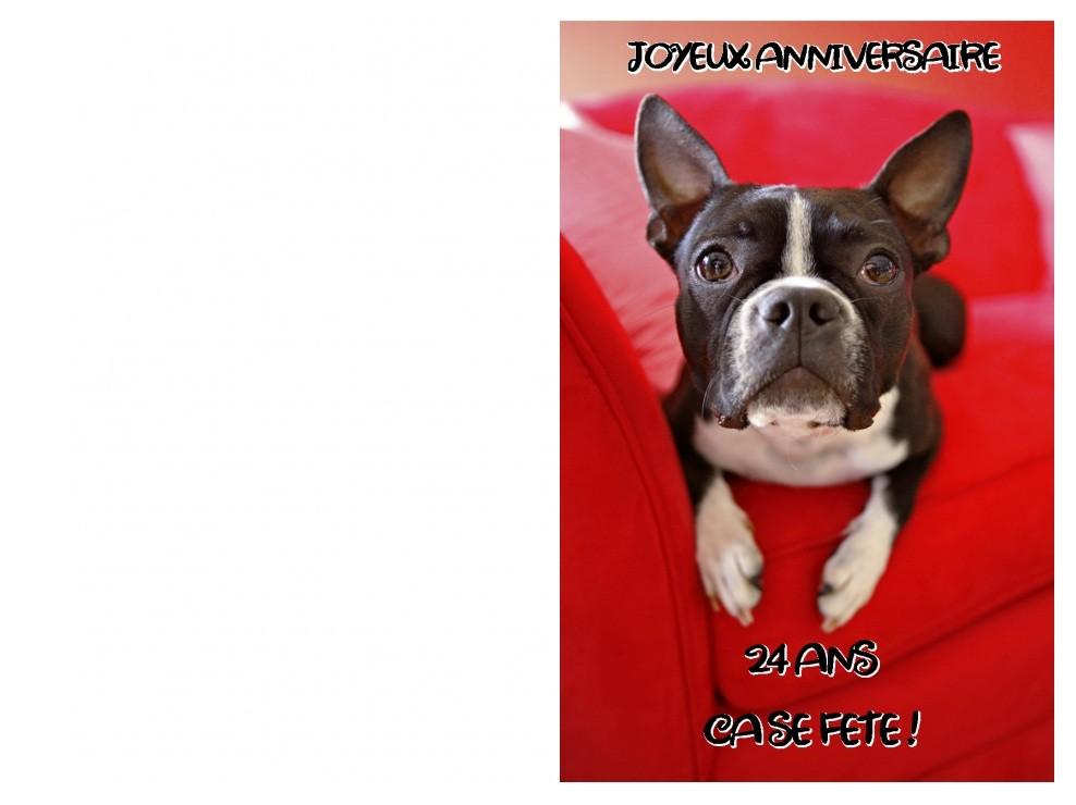 Carte anniversaire humoristique avec chien