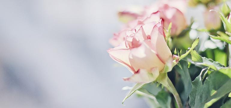 Texte anniversaire avec fleurs