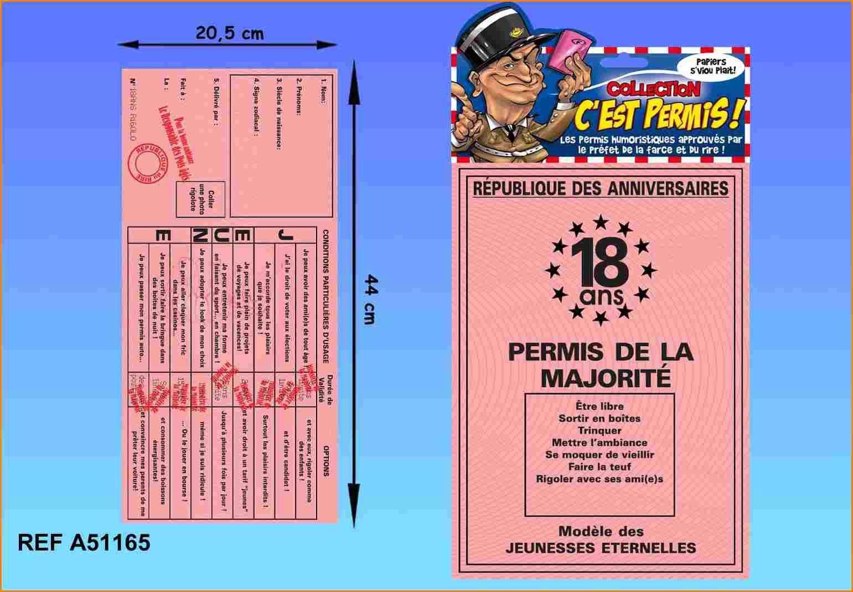 Carte Joyeux Anniversaire 18 Ans A Imprimer Gratuitement Elevagequalitetouraine
