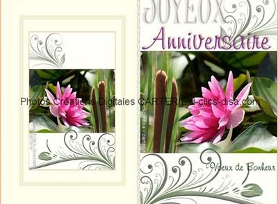 Carte Joyeux Anniversaire Adulte Gratuite A Imprimer Elevagequalitetouraine