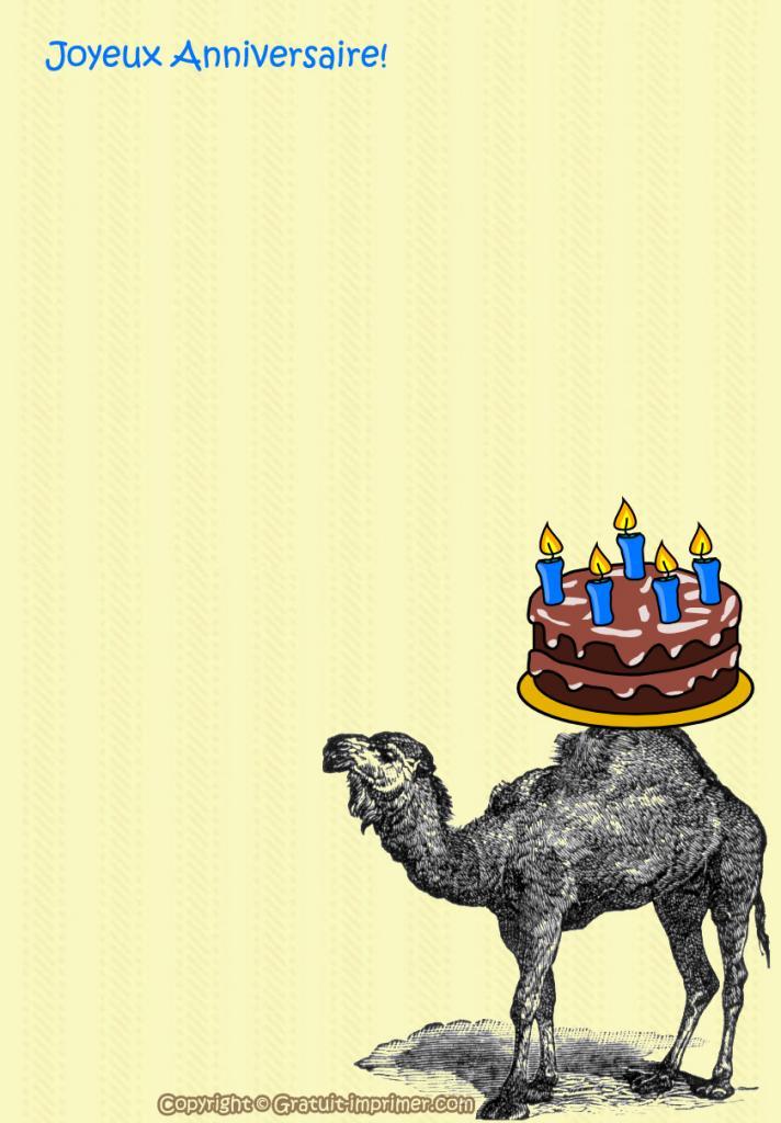 Dromadaire carte anniversaire 30 ans