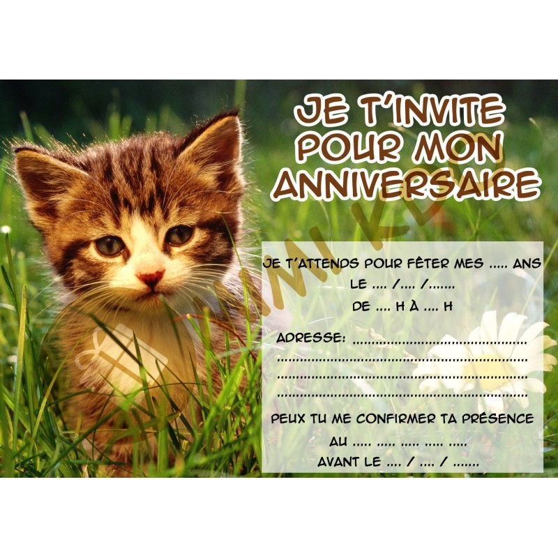 Carte invitation anniversaire fille chat