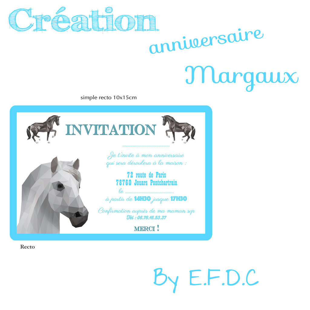 Carte anniversaire cheval 13 ans