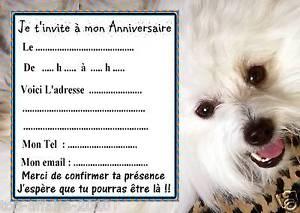 Carte invitation anniversaire animal