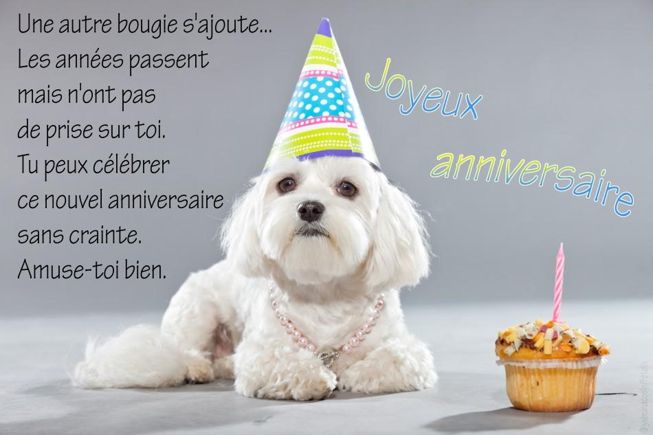 Jolie carte anniversaire amie