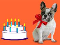 Carte anniversaire gratuite a envoyer
