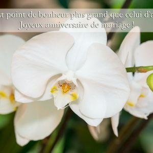 Carte anniversaire de mariage gratuit