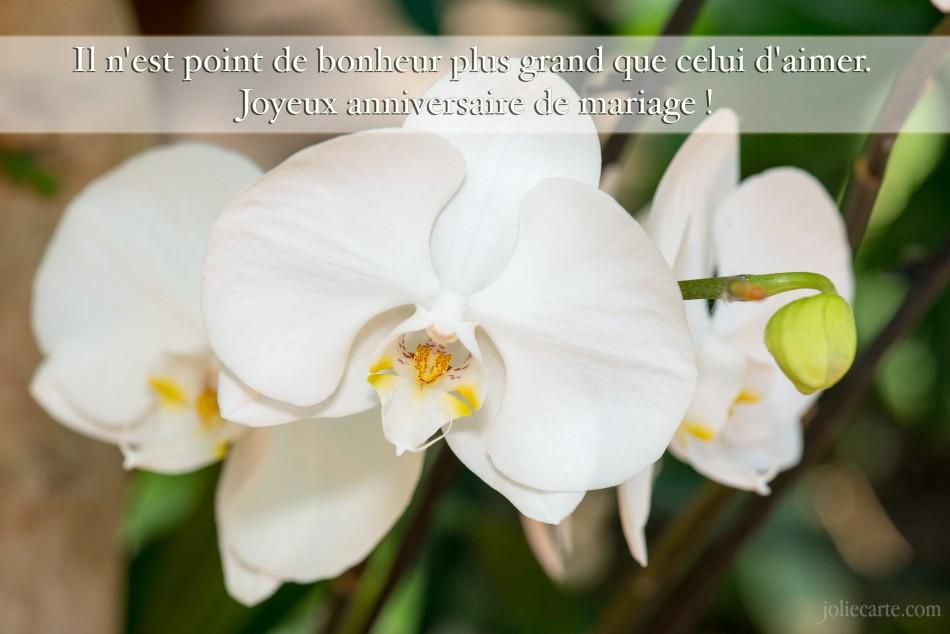 Cartes anniversaire de mariage gratuite