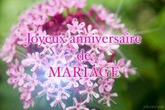 Carte gratuite anniversaire de mariage 2 ans